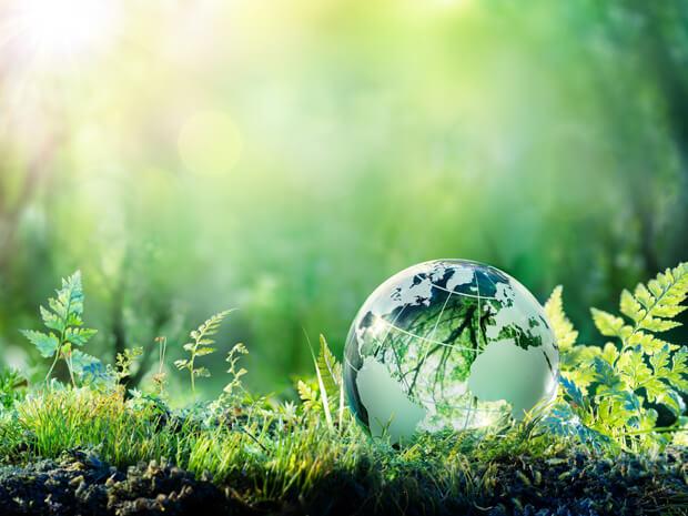 Nachhaltige Sportshirts - umweltfreundlich und funktional